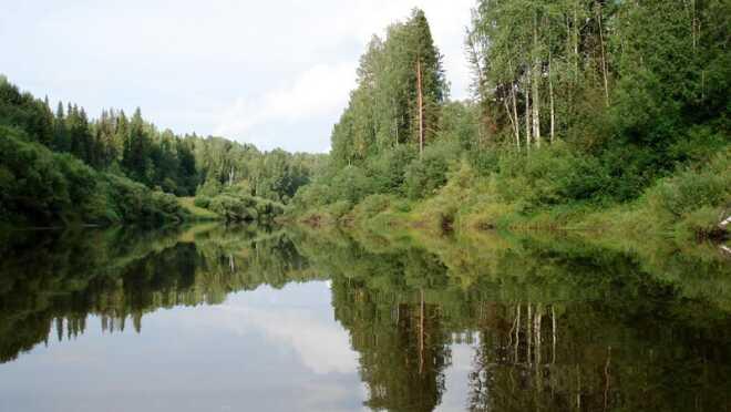 Коттеджный поселок Буньковские просторы