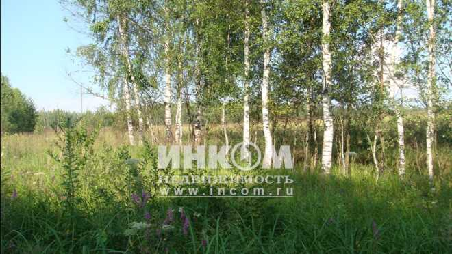 Коттеджный поселок Кудиново-Люкс