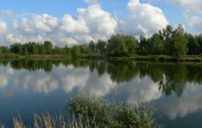 Коттеджный поселок Загорянский