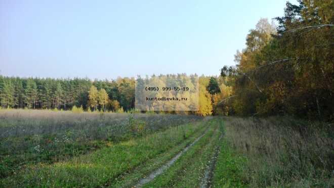 Коттеджный поселок Кустодиевка