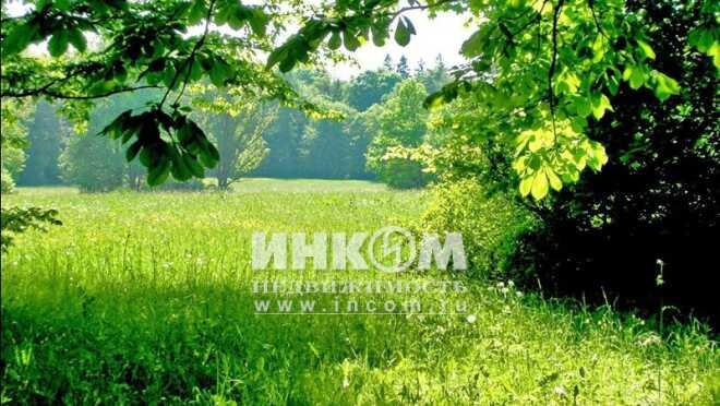 Коттеджный поселок Вознесенское